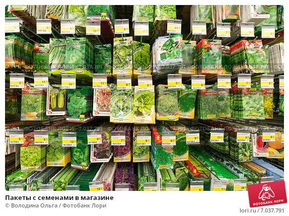 Купить «Пакеты с семенами в магазине», эксклюзивное фото № 7037791, снято 15 февраля 2015 г. (c) Володина Ольга / Фотобанк Лори