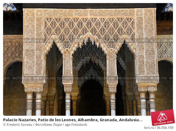 Palacio Nazaries, Patio de los Leones, Alhambra, Granada, Andalusia... Стоковое фото, фотограф Frederic Soreau / age Fotostock / Фотобанк Лори