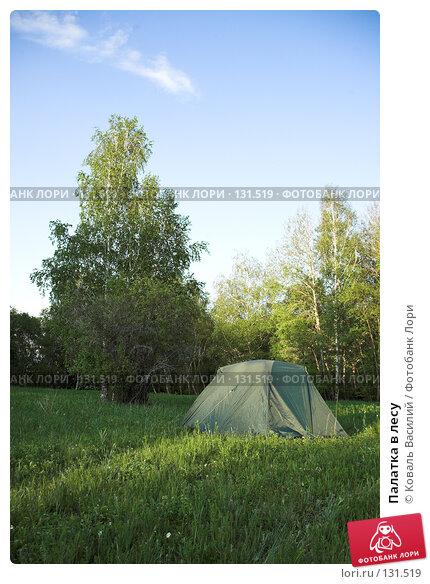 Купить «Палатка в лесу», фото № 131519, снято 24 мая 2007 г. (c) Коваль Василий / Фотобанк Лори