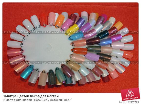 Палитра цветов лаков для ногтей, фото № 227795, снято 29 февраля 2008 г. (c) Виктор Филиппович Погонцев / Фотобанк Лори