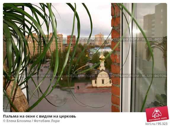 Пальма на окне с видом на церковь, фото № 95323, снято 9 октября 2007 г. (c) Елена Блохина / Фотобанк Лори