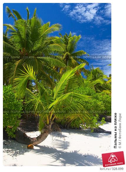 Купить «Пальмы на пляже», фото № 328099, снято 20 апреля 2018 г. (c) М / Фотобанк Лори