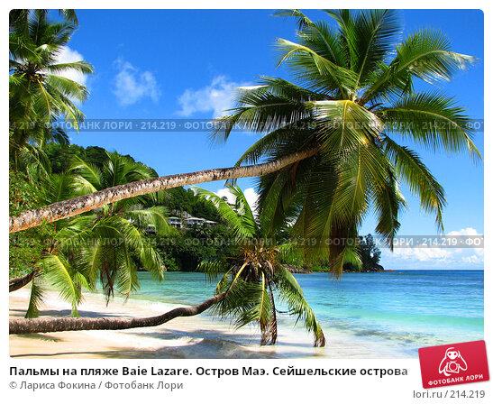 Пальмы на пляже Baie Lazare. Остров Маэ. Сейшельские острова, фото № 214219, снято 13 мая 2007 г. (c) Лариса Фокина / Фотобанк Лори