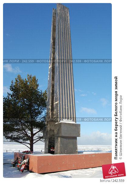 Купить «Памятник на берегу Белого моря зимой», фото № 242559, снято 20 мая 2018 г. (c) Шемякин Евгений / Фотобанк Лори