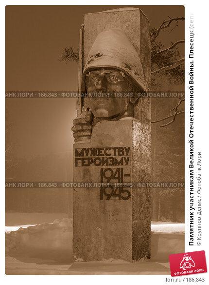 Памятник участникам Великой Отечественной Войны. Плесецк (сепия), фото № 186843, снято 6 декабря 2016 г. (c) Крупнов Денис / Фотобанк Лори