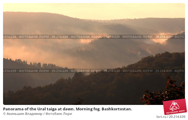 Купить «Panorama of the Ural taiga at dawn. Morning fog. Bashkortostan.», фото № 29214639, снято 9 сентября 2017 г. (c) Акиньшин Владимир / Фотобанк Лори