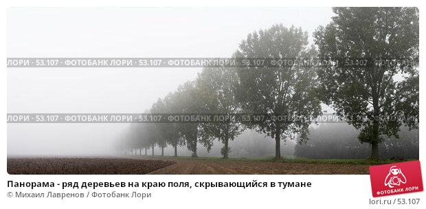 Панорама - ряд деревьев на краю поля, скрывающийся в тумане, фото № 53107, снято 16 августа 2017 г. (c) Михаил Лавренов / Фотобанк Лори