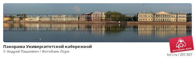 Купить «Панорама Университетской набережной», фото № 291507, снято 23 апреля 2018 г. (c) Андрей Пашкевич / Фотобанк Лори
