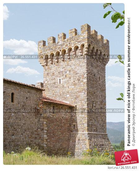 Panoramic view of nice old kings castle in summer environment, фото № 26551431, снято 14 июня 2014 г. (c) Дмитрий Эрслер / Фотобанк Лори