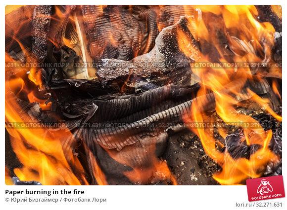 Купить «Paper burning in the fire», фото № 32271631, снято 20 июля 2017 г. (c) Юрий Бизгаймер / Фотобанк Лори