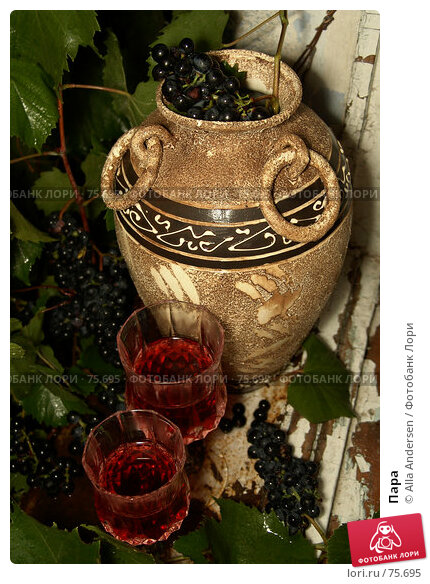 Купить «Пара», фото № 75695, снято 2 сентября 2006 г. (c) Alla Andersen / Фотобанк Лори