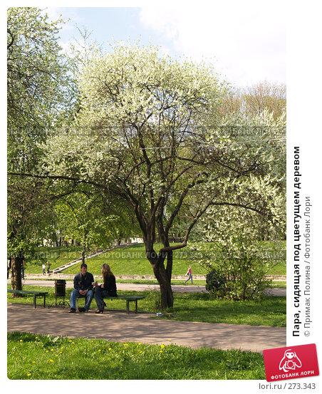 Пара, сидящая под цветущем деревом, фото № 273343, снято 5 мая 2008 г. (c) Примак Полина / Фотобанк Лори