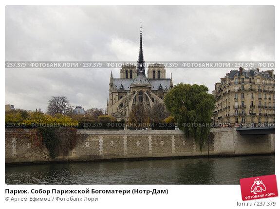Купить «Париж. Собор Парижской Богоматери (Нотр-Дам)», фото № 237379, снято 11 ноября 2007 г. (c) Артем Ефимов / Фотобанк Лори