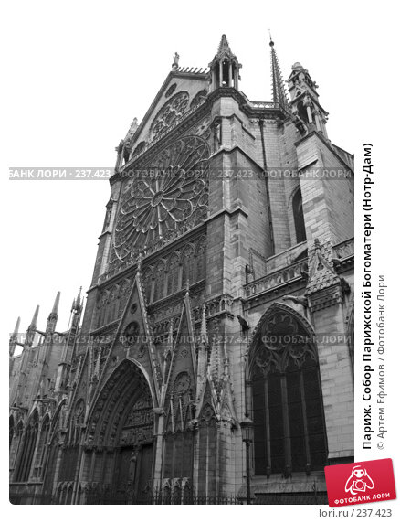 Париж. Собор Парижской Богоматери (Нотр-Дам), фото № 237423, снято 10 ноября 2007 г. (c) Артем Ефимов / Фотобанк Лори