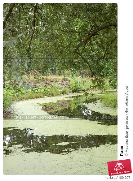 Парк, фото № 180207, снято 19 августа 2007 г. (c) Марина Дмитриевых / Фотобанк Лори