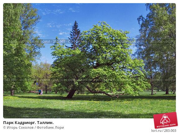 Парк Кадриорг. Таллин., фото № 283003, снято 11 мая 2008 г. (c) Игорь Соколов / Фотобанк Лори