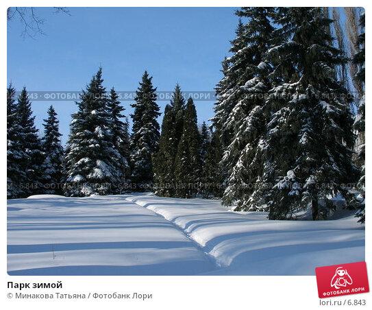 Купить «Парк зимой», фото № 6843, снято 3 марта 2006 г. (c) Минакова Татьяна / Фотобанк Лори