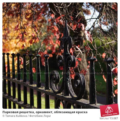Парковая решетка, орнамент, облезающая краска, фото № 13087, снято 19 ноября 2006 г. (c) Tamara Kulikova / Фотобанк Лори