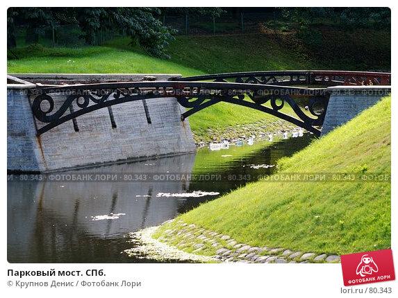 Парковый мост. СПб., фото № 80343, снято 30 июля 2007 г. (c) Крупнов Денис / Фотобанк Лори