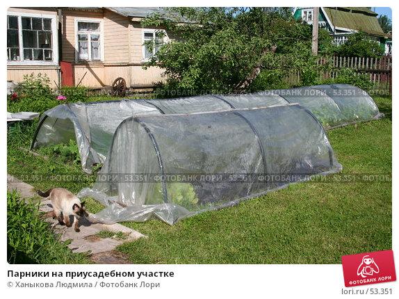 Парники на приусадебном участке, фото № 53351, снято 16 июня 2007 г. (c) Ханыкова Людмила / Фотобанк Лори