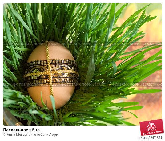 Пасхальное яйцо, фото № 247371, снято 10 марта 2008 г. (c) Анна Мегеря / Фотобанк Лори