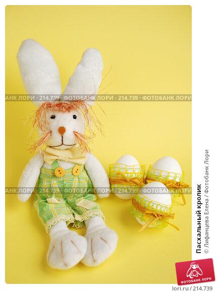Купить «Пасхальный кролик», фото № 214739, снято 2 марта 2008 г. (c) Лифанцева Елена / Фотобанк Лори