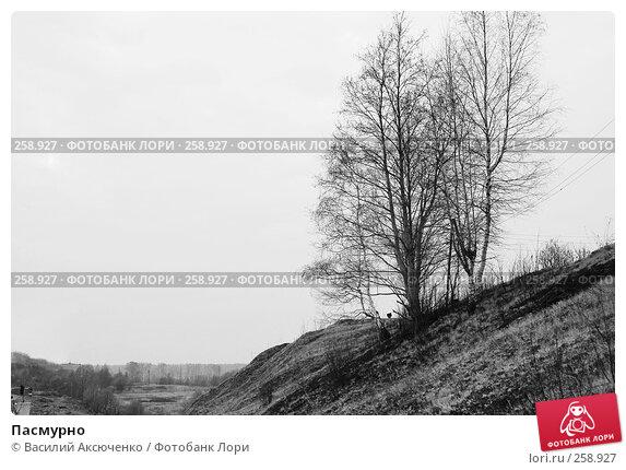 Пасмурно, фото № 258927, снято 16 апреля 2008 г. (c) Василий Аксюченко / Фотобанк Лори