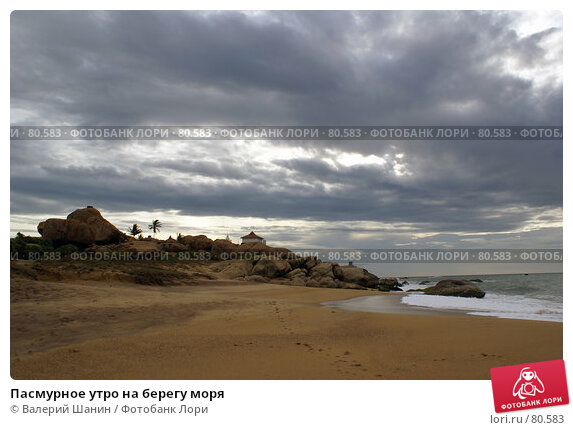 Пасмурное утро на берегу моря, фото № 80583, снято 16 июня 2007 г. (c) Валерий Шанин / Фотобанк Лори