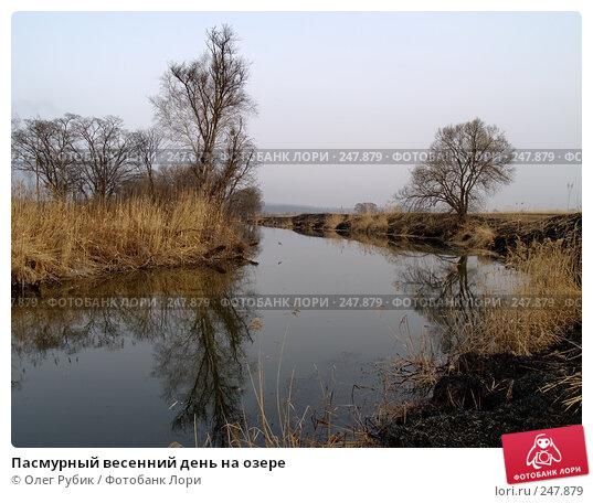 Пасмурный весенний день на озере, фото № 247879, снято 10 апреля 2008 г. (c) Олег Рубик / Фотобанк Лори