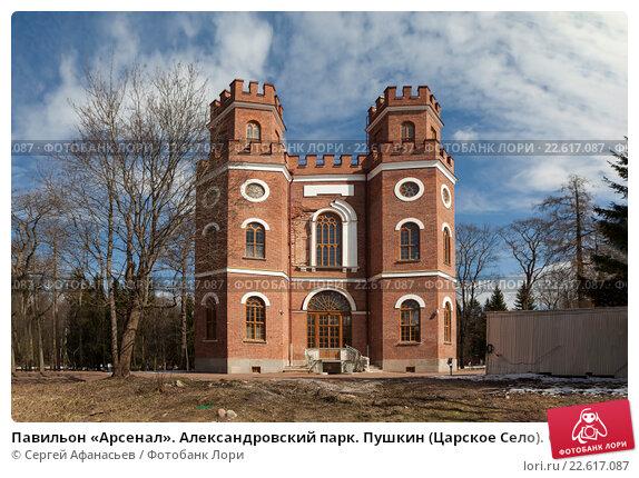 Пушкин александровская купить