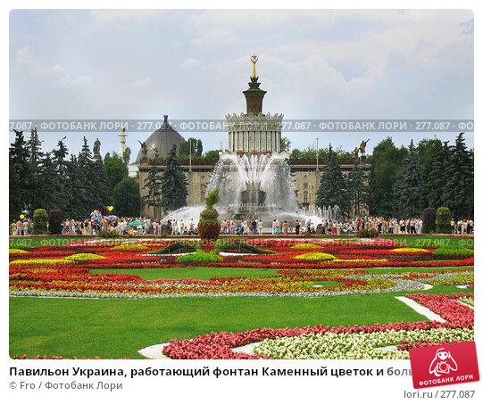 Павильон Украина, работающий фонтан Каменный цветок и большая красивая цветочная клумба, ВВЦ, Москва, фото № 277087, снято 17 июля 2005 г. (c) Fro / Фотобанк Лори