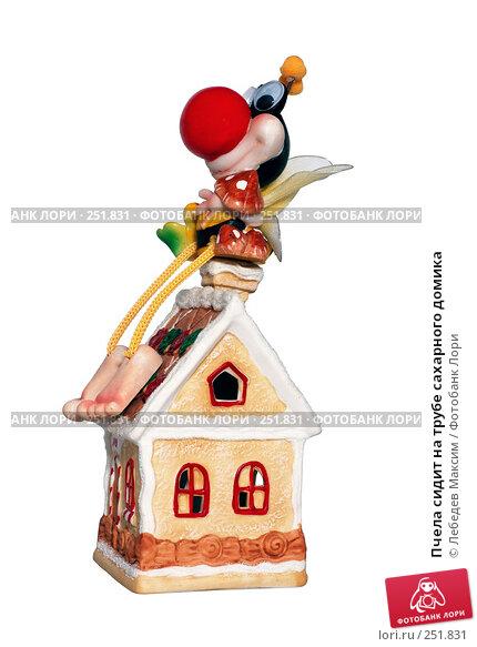 Купить «Пчела сидит на трубе сахарного домика», фото № 251831, снято 15 апреля 2008 г. (c) Лебедев Максим / Фотобанк Лори