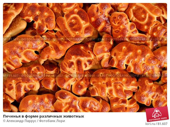 Печенья в форме различных животных, фото № 81607, снято 2 января 2007 г. (c) Александр Паррус / Фотобанк Лори