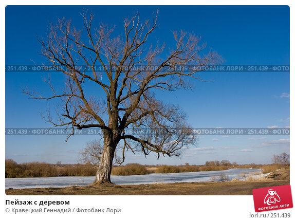 Пейзаж с деревом, фото № 251439, снято 31 марта 2005 г. (c) Кравецкий Геннадий / Фотобанк Лори