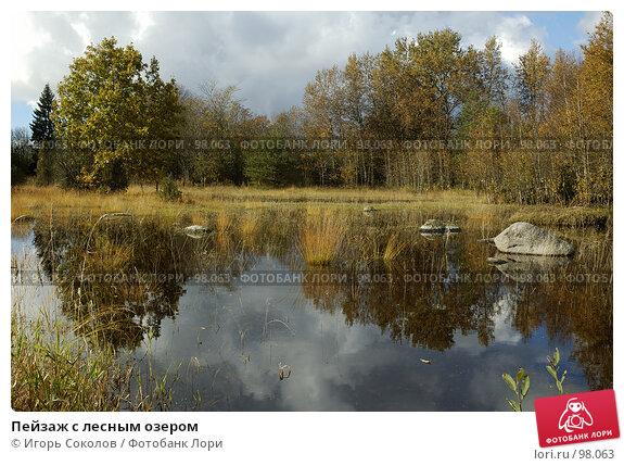 Пейзаж с лесным озером, фото № 98063, снято 22 февраля 2017 г. (c) Игорь Соколов / Фотобанк Лори