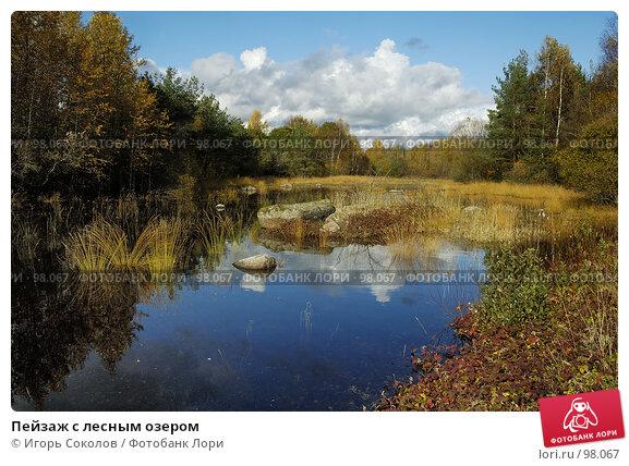 Пейзаж с лесным озером, фото № 98067, снято 26 марта 2017 г. (c) Игорь Соколов / Фотобанк Лори
