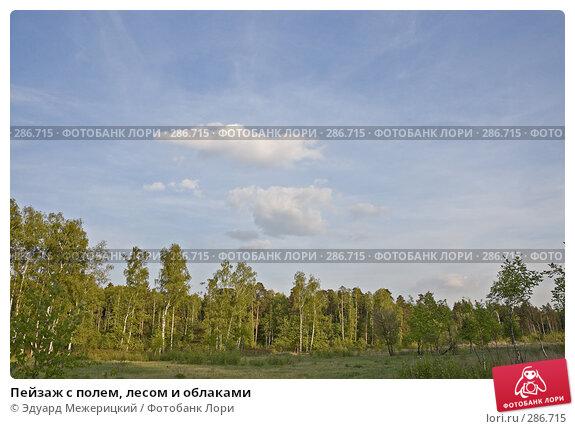 Пейзаж с полем, лесом и облаками, фото № 286715, снято 12 мая 2008 г. (c) Эдуард Межерицкий / Фотобанк Лори
