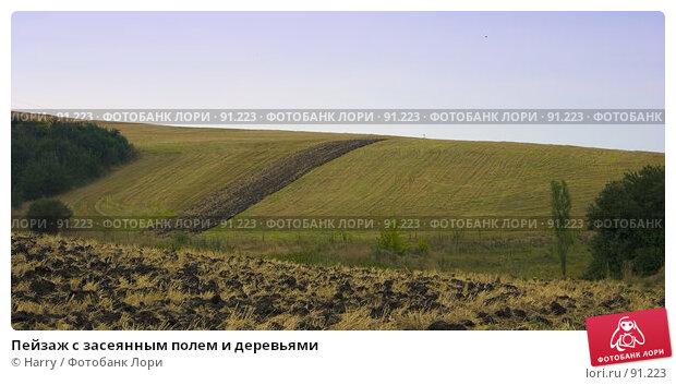Купить «Пейзаж с засеянным полем и деревьями», фото № 91223, снято 18 августа 2007 г. (c) Harry / Фотобанк Лори