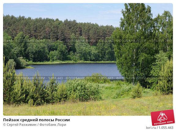 Купить «Пейзаж средней полосы России», фото № 1055443, снято 13 июня 2009 г. (c) Сергей Разживин / Фотобанк Лори