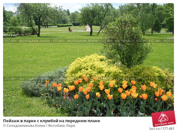 Пейзаж в парке с клумбой на переднем плане, фото № 177491, снято 24 мая 2006 г. (c) Солодовникова Елена / Фотобанк Лори