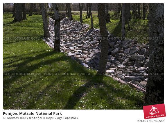 Купить «Penijõe, Matsalu National Park», фото № 30769543, снято 25 мая 2019 г. (c) age Fotostock / Фотобанк Лори