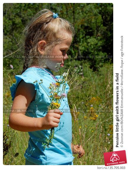 Pensive little girl with flowers in a field. Стоковое фото, фотограф Zoonar.com/BONZAMI Emmanuelle / age Fotostock / Фотобанк Лори