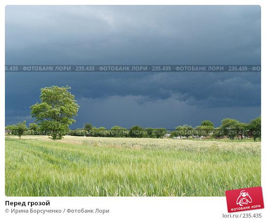 Перед грозой, фото № 235435, снято 17 июня 2007 г. (c) Ирина Борсученко / Фотобанк Лори