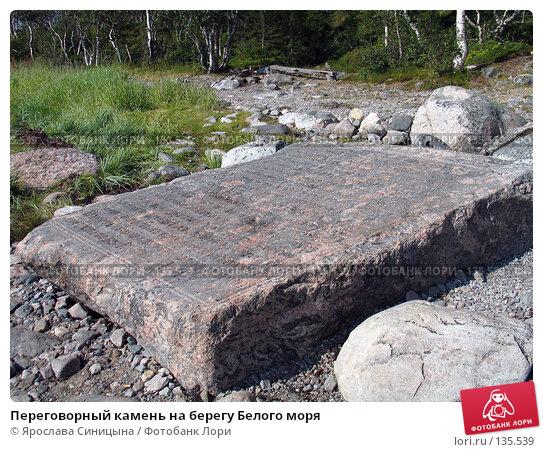 Переговорный камень на берегу Белого моря, фото № 135539, снято 16 августа 2007 г. (c) Ярослава Синицына / Фотобанк Лори