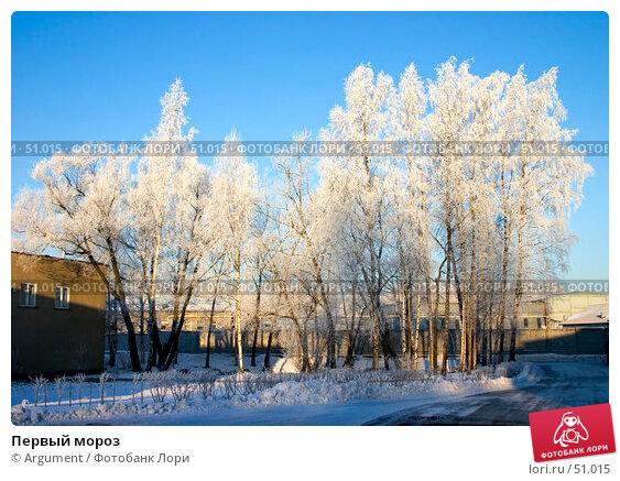 Купить «Первый мороз», фото № 51015, снято 28 декабря 2004 г. (c) Argument / Фотобанк Лори