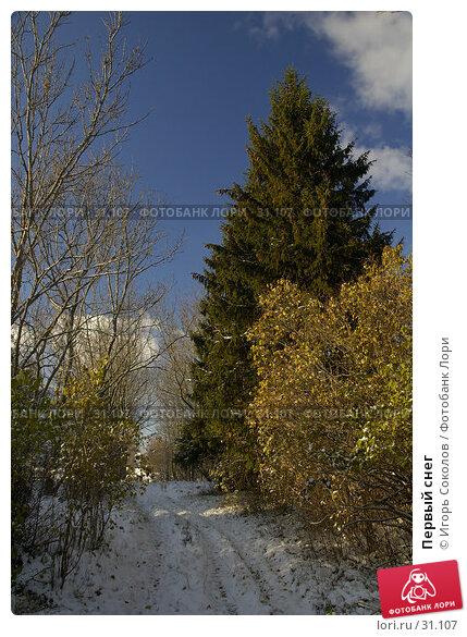 Первый снег, фото № 31107, снято 9 декабря 2016 г. (c) Игорь Соколов / Фотобанк Лори