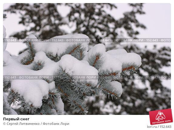 Купить «Первый снег», фото № 152643, снято 16 декабря 2007 г. (c) Сергей Литвиненко / Фотобанк Лори