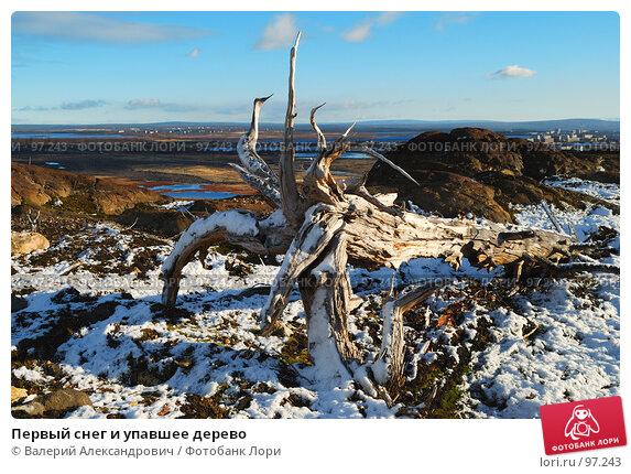 Первый снег и упавшее дерево, фото № 97243, снято 10 октября 2007 г. (c) Валерий Александрович / Фотобанк Лори