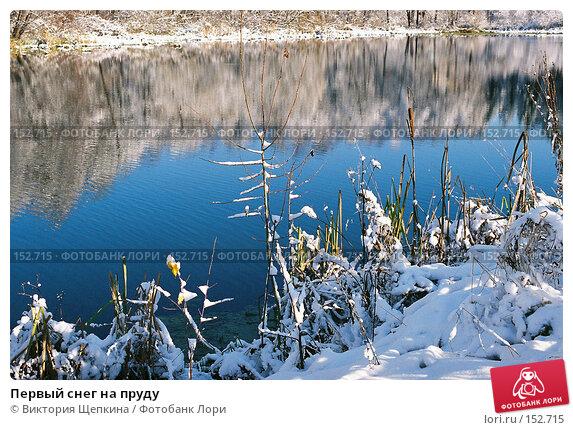 Купить «Первый снег на пруду», фото № 152715, снято 13 декабря 2017 г. (c) Виктория Щепкина / Фотобанк Лори