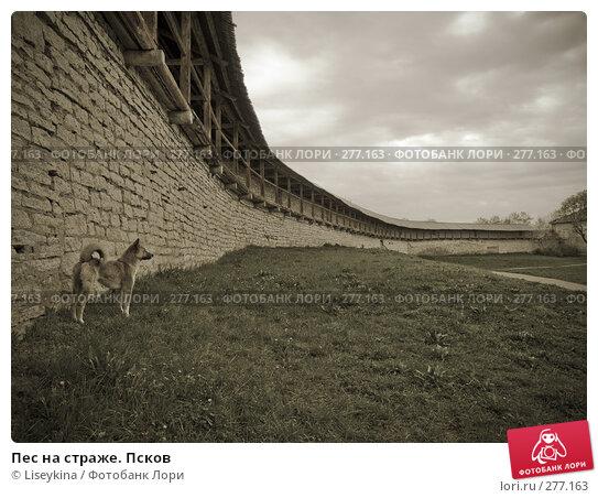 Купить «Пес на страже. Псков», фото № 277163, снято 2 мая 2008 г. (c) Liseykina / Фотобанк Лори